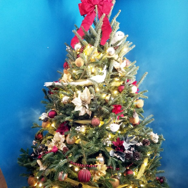 Three Things Thursday: Christmas Tree | Ms. Emily's Home for Full-Grown Nerds