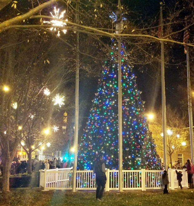 Three Things Thursday: Town Christmas Tree | Ms. Emily's Home for Full-Grown Nerds